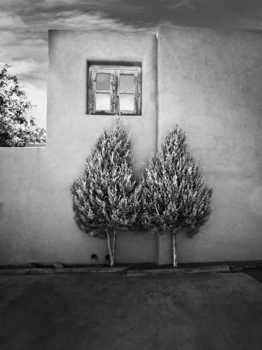 Pair_trees_etmeho
