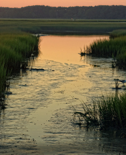 Sunrise at the stream fgnoxs