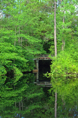 Swamp tunnel oovpzn