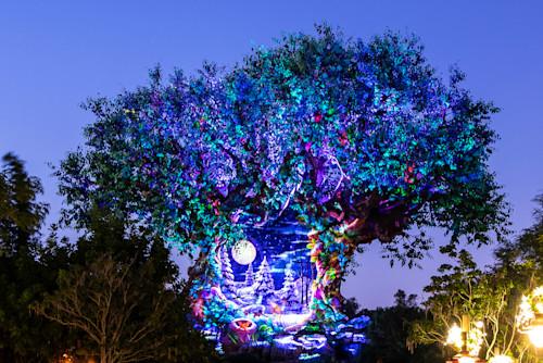 Tree of life holiday awakenings scene 6 n15ugr
