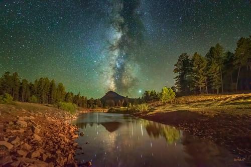 Celestial wilderness bvtkll