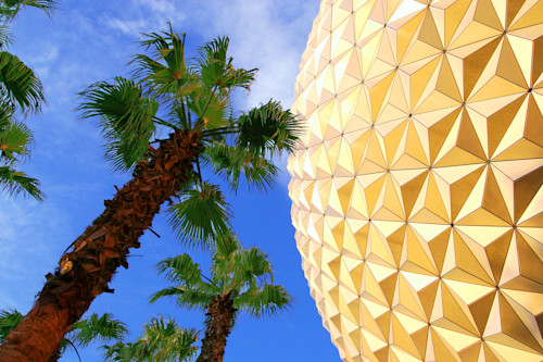 Spaceship earth and palm trees pmqh3p