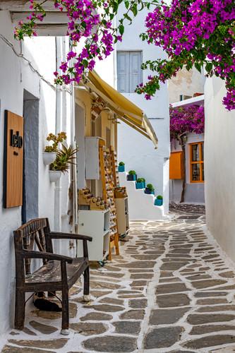 Leto hotel street with bougainvillea s paros greece gnkx7k