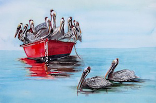 Lw pelicans on boat o1nqld