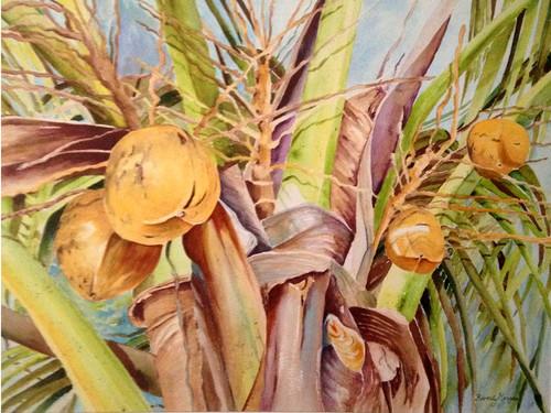 Coconut crown 2 yxgtq1
