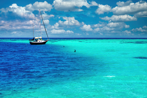 Sailboat and dry tortugas national park fl cyw52f