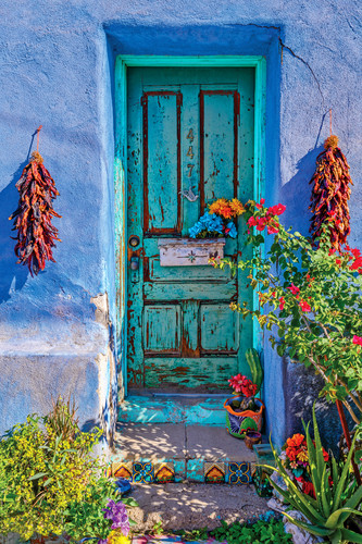 Blue wall and green door with flowers. tucson arizona jjqkoc