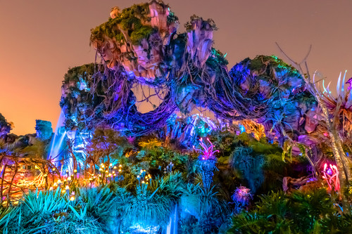 Pandora nights at animal kingdom wzktpz