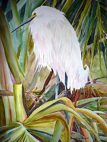 Nesting egret ijjkyo