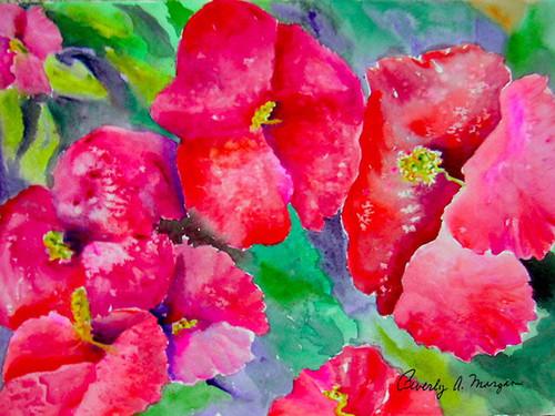 Bright red poppies rkufvc