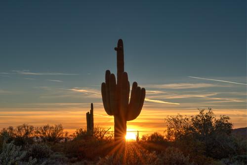 Sonora sunset 01 rlkan3