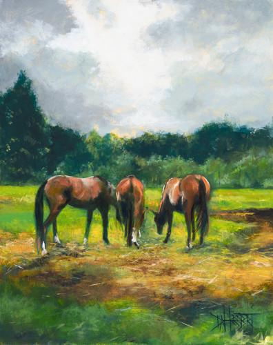 Herbertd three horses v4fnl 11x14 mbw p100 w3n82m