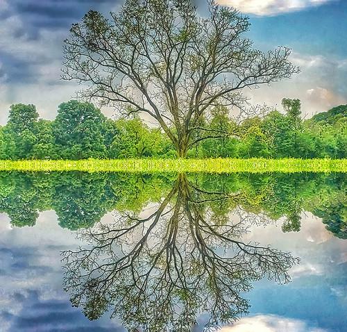Image3a22582 mirror 05 edit edit gigapixel rqarqo