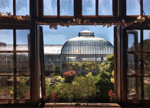 Openwindow conservatory mpsxcy