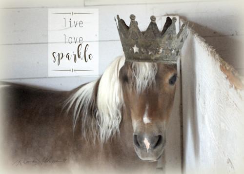 Pony crowned h vs t6sd6z