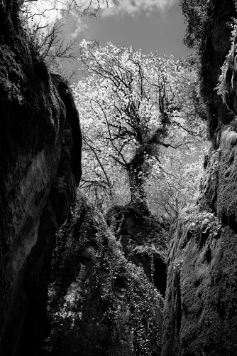 Jkp53 7800 la verna cliffs bw mldq4j