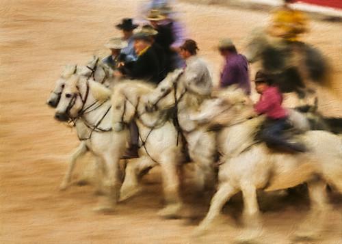 Gypsy horsemen tr9cxe
