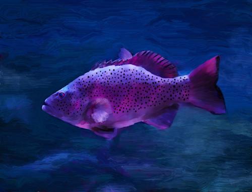 Fish3 lkbhyb