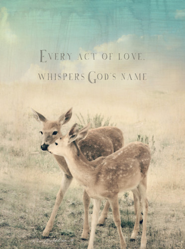 Fawn love whispers s mpkc6j