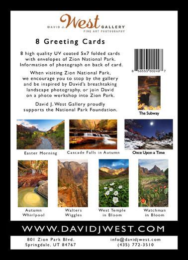 Boxset of 8 5x7 greeting cards boxset of 8 greeting cards m4hsunfo