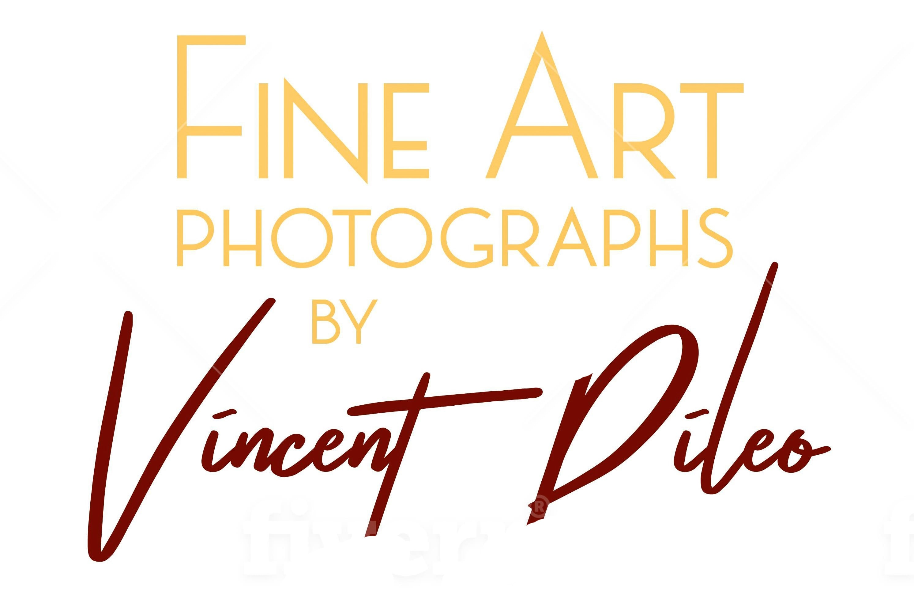 Vincent DiLeo Fine Art Photography