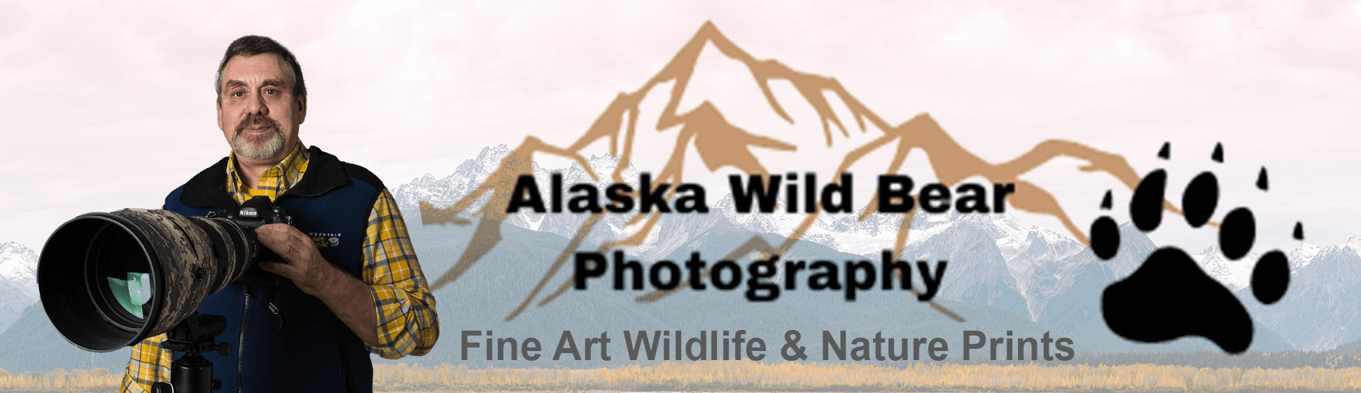 Alaska Wild Bear Photography - Fine Art Wildlife & Nature Prints