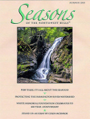 Magazine cover photo by Thomas Schoeller-Campbell Falls