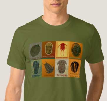 8 trilobite t-shirt in Fat Boy Fossils shop