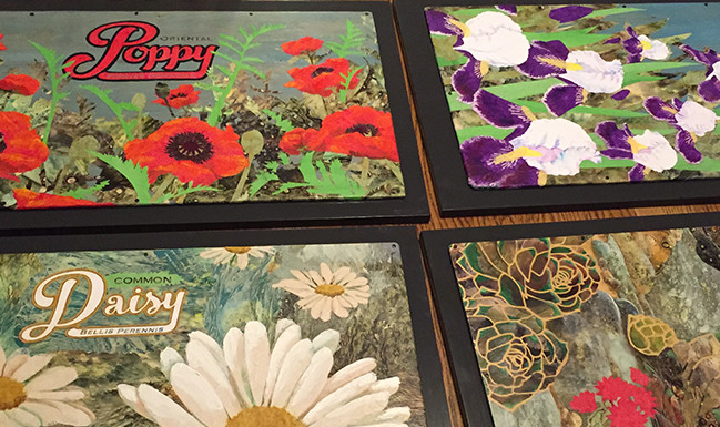 Four finished pieces of art in Jenny Goring's signature style of collage painting. The subjects are: Daisies, Poppies, Hens & Chicks and Irises.