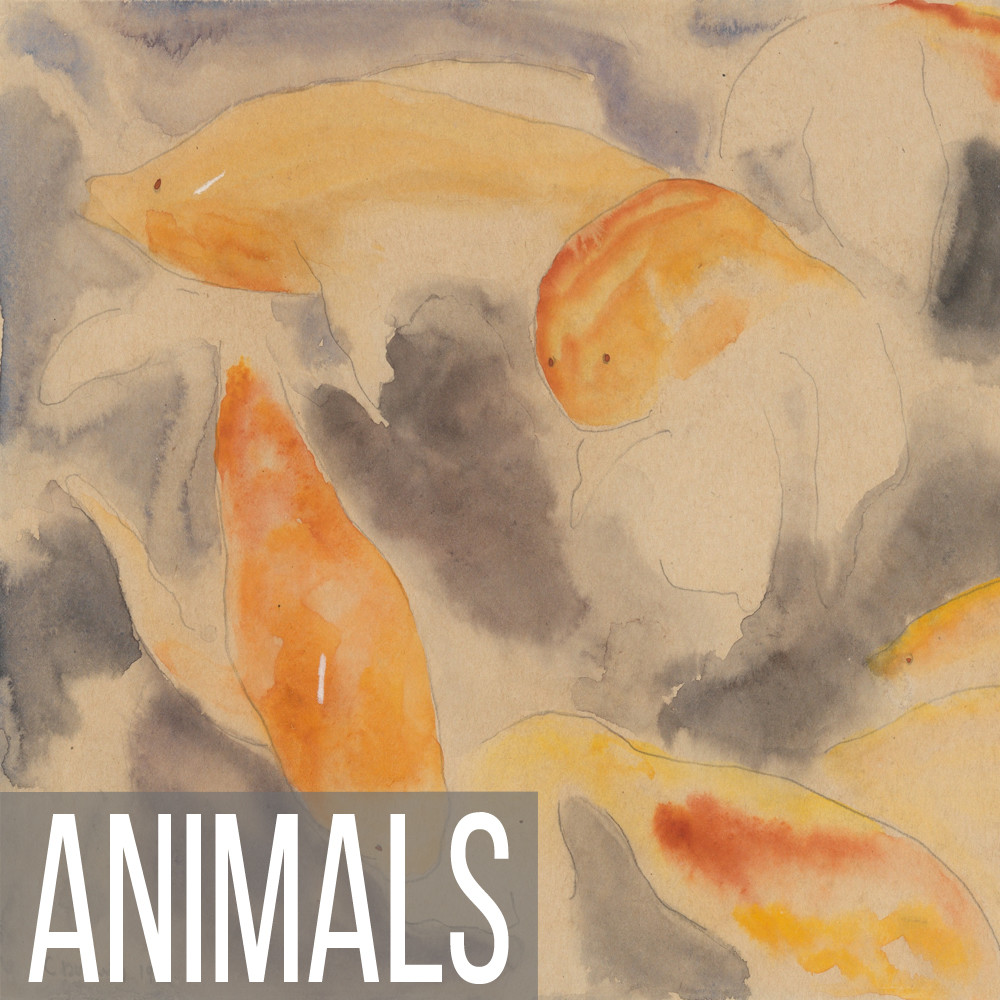 Abstract Animal art reproduction prints on canvas, paper, poster and note cards.