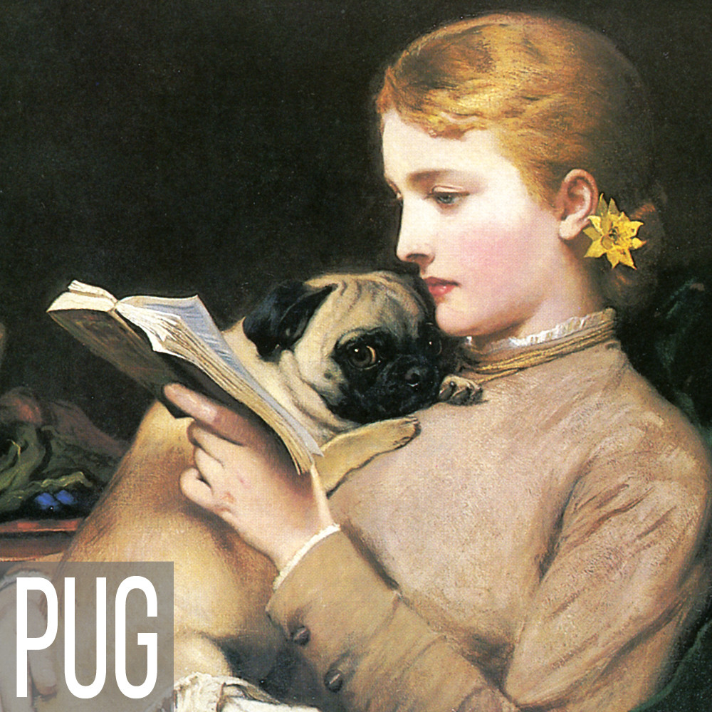 Pug art print reproductions
