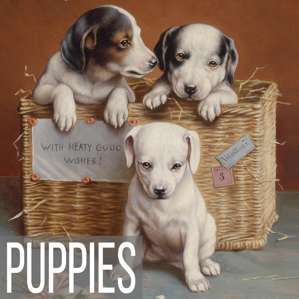 Puppy art print reproductions