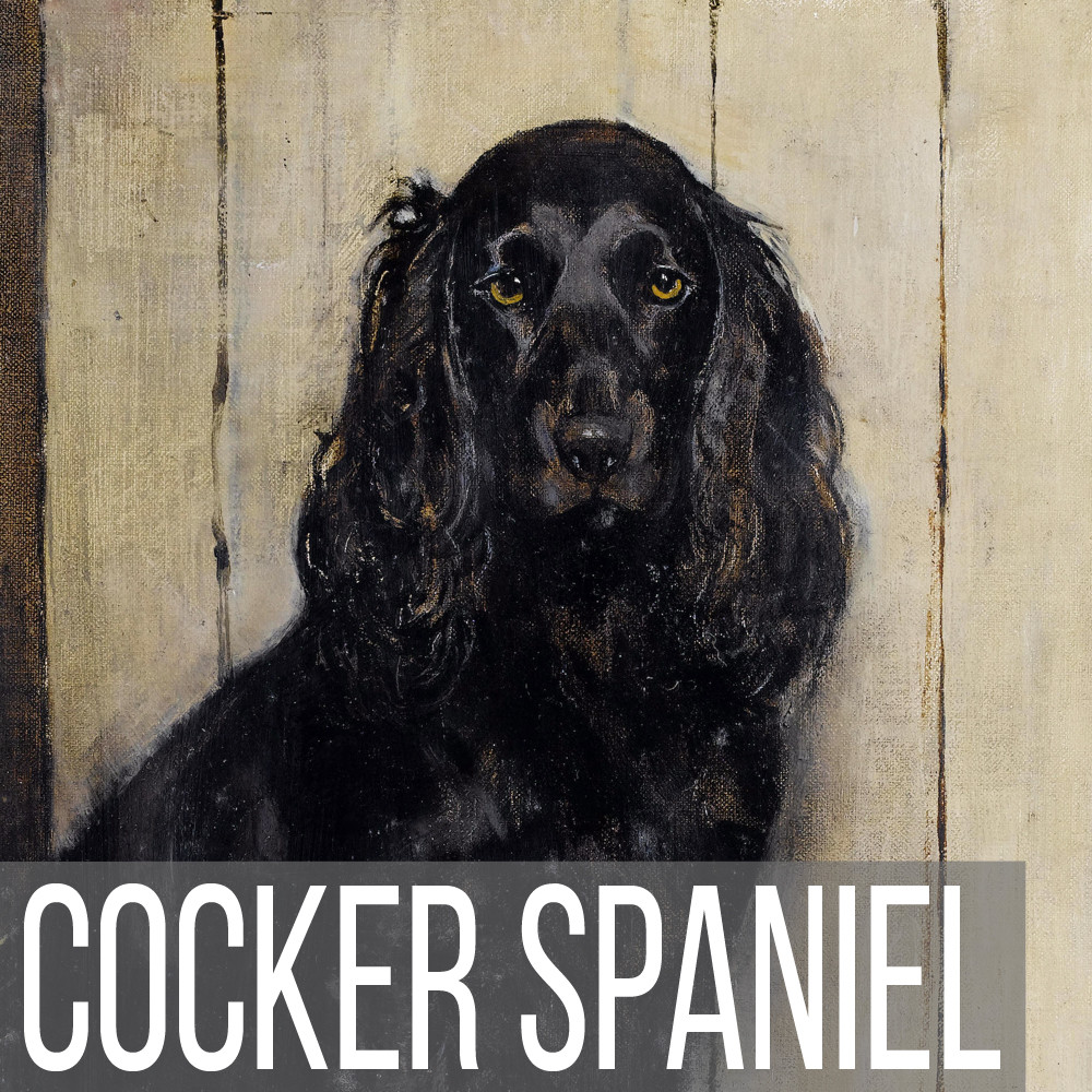 Cocker Spaniel art print reproductions