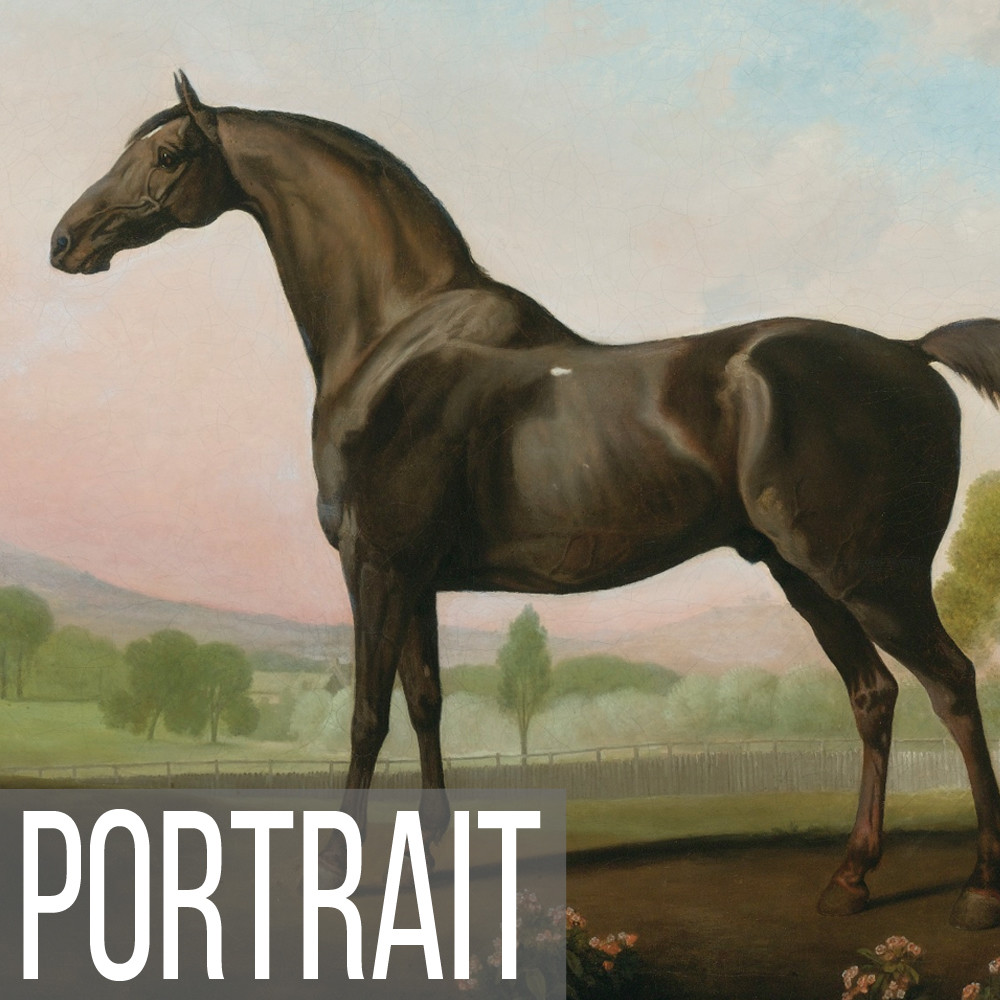 Equestrian & Horse portrait painting art print reproductions