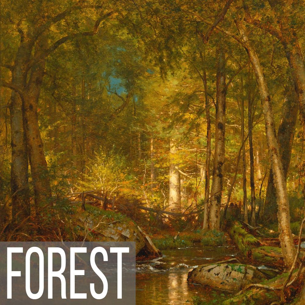 Forest landscape art print reproductions
