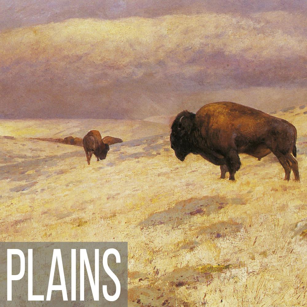Plains landscape art print reproductions