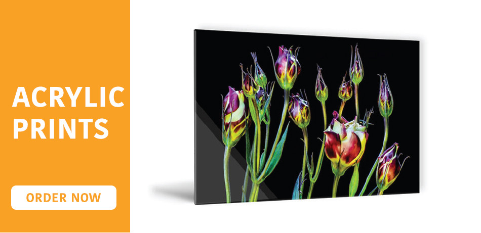 Online Acrylic Photo Prints