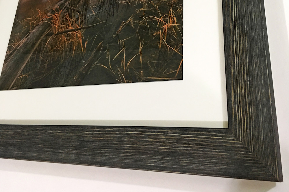 picture framing calgary picture framing frames for pictures print framing online custom