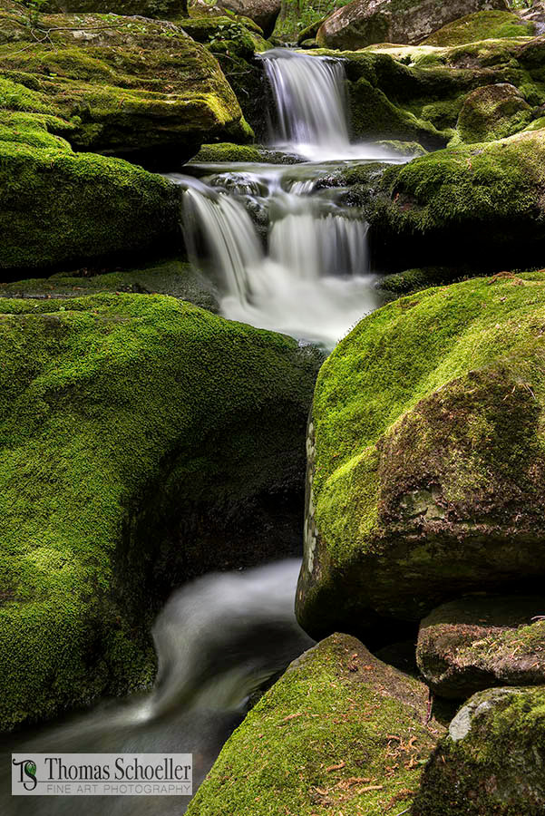 Cascades at Falls Brook natural area, image by Thom Schoeller photography