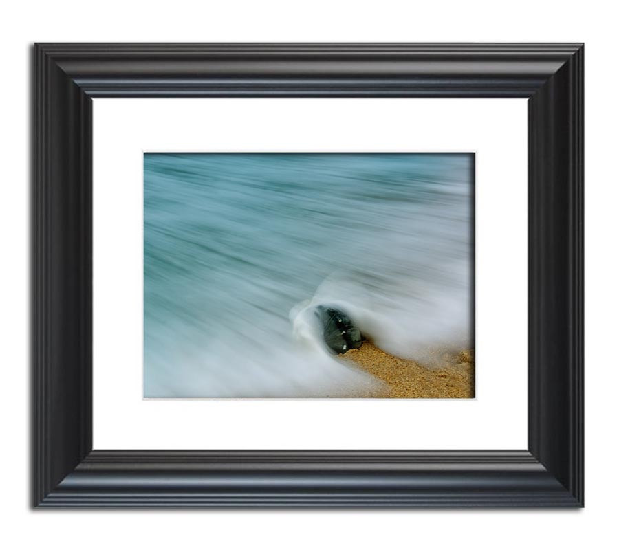 MArch Raffle nature photograph Whelk Seashell and Misty Wave Framed art print