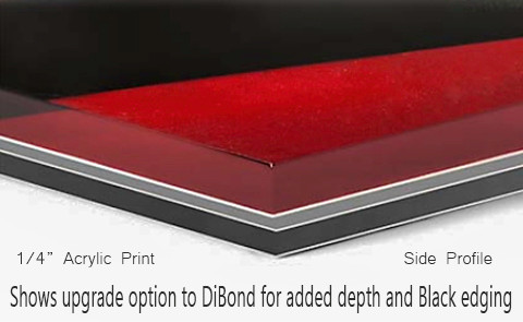 """Side profile of 1/4"""" Acrylic print with 1/8"""" DiBond upgrade with black edge"""