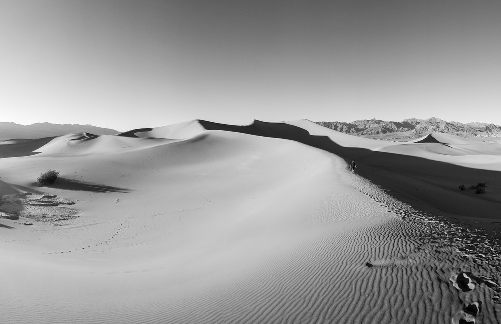 black and white image of Mesquite Flat sand dunes in Death valley National Park