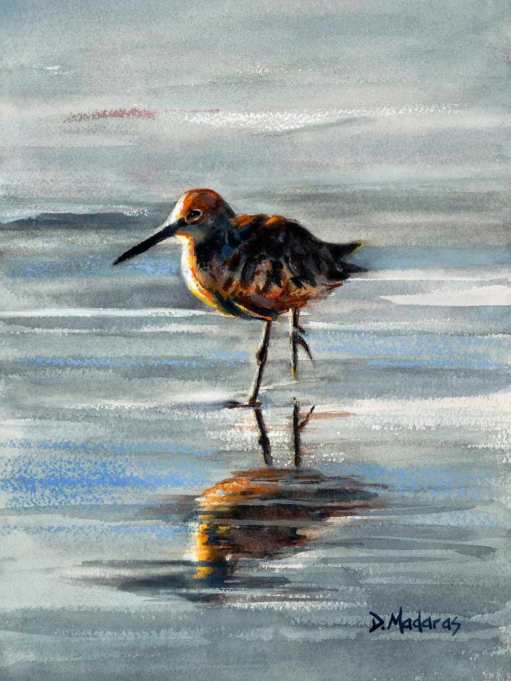 Southwest Art | Sandpiper