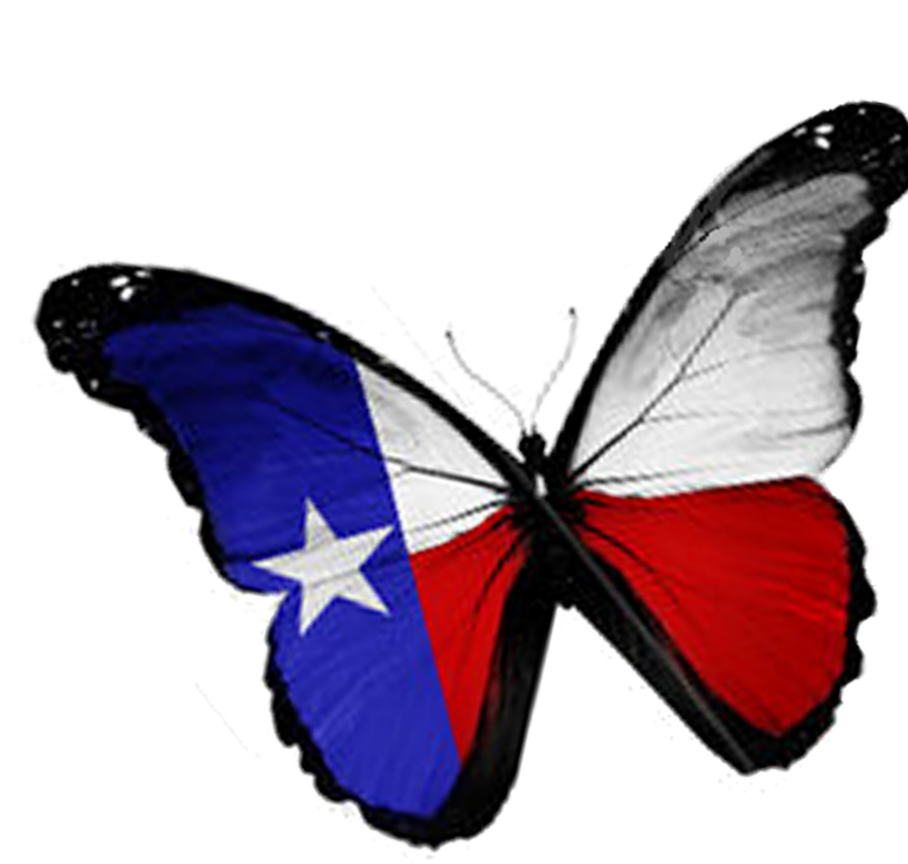 Texas Butterfly