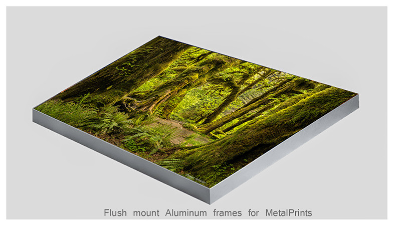 Hall of Mosses on vivid MetalPrint photo panel framed with silver Flush Mount by Thomas Schoeller