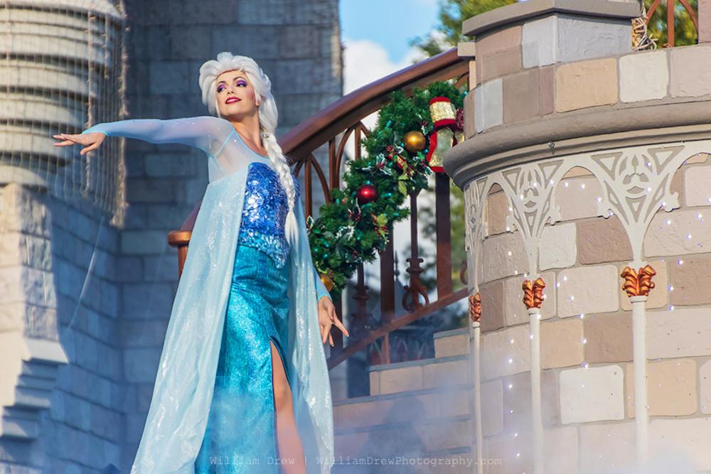 Queen Elsa - Disney Wall Art Prints   William Drew Photography
