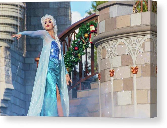 Queen Elsa - Disney Canvas Wrap Art   William Drew Photography