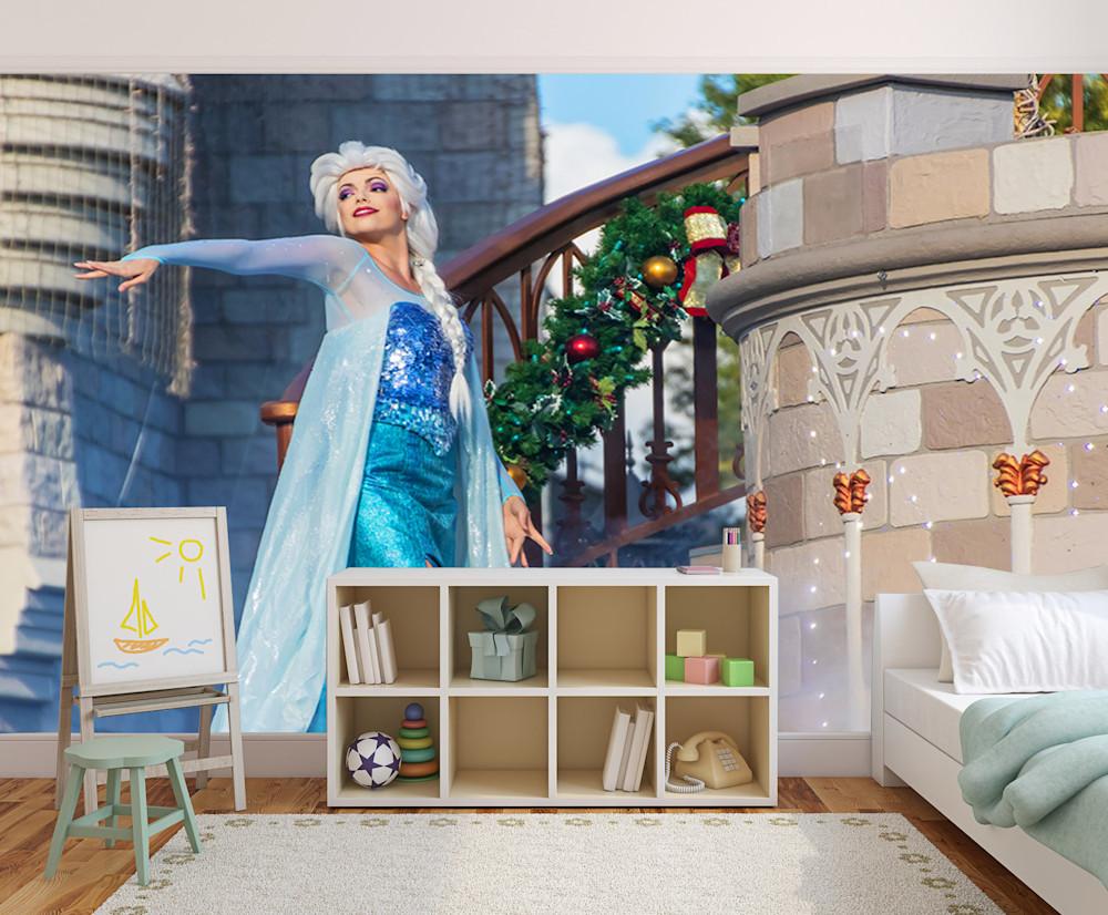 Frozen Elsa - Disney Wall Murals   William Drew Photography