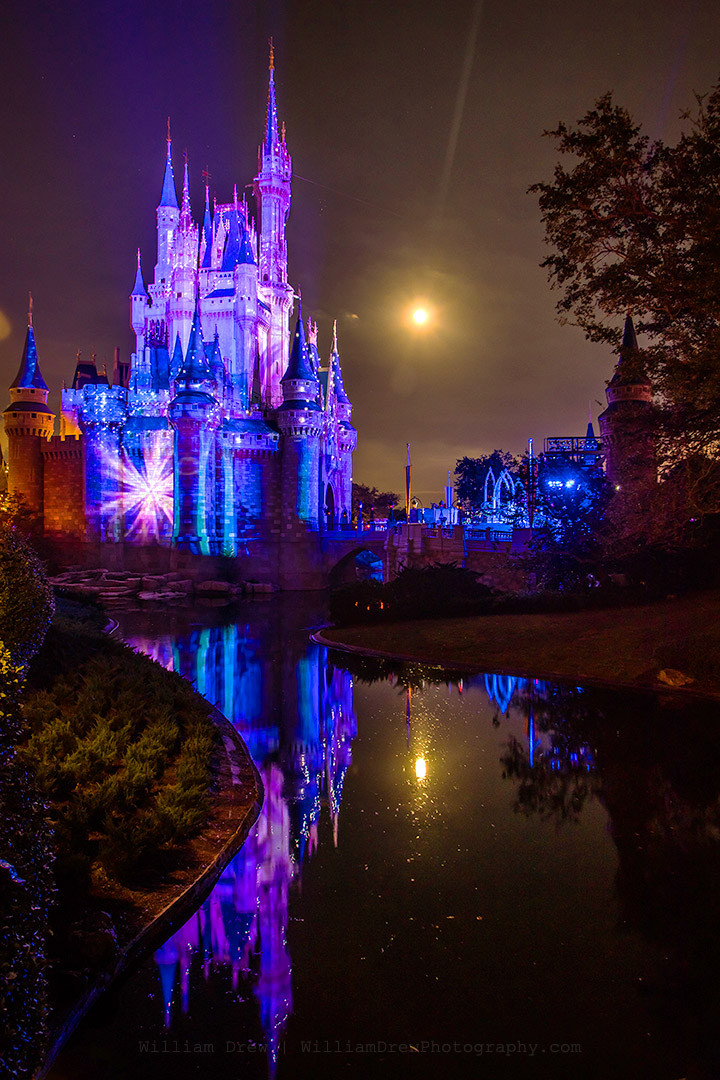 A Frozen Holiday Wish - Disney Christmas Art | William Drew Photography