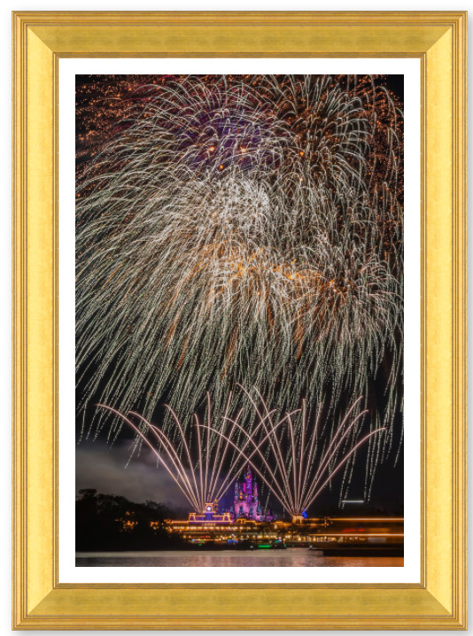 Disney Framed Art | William Drew Photography